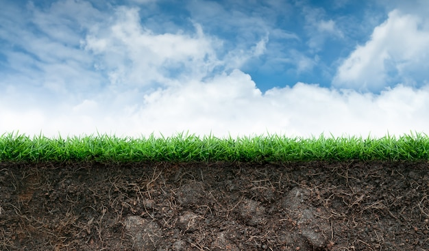 Gleba i trawa w błękitne niebo