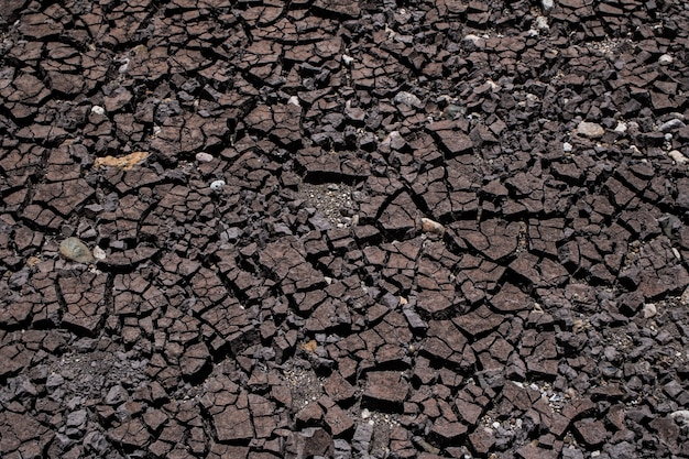Gleba jest sucha i popękana tekstura, streszczenie tło