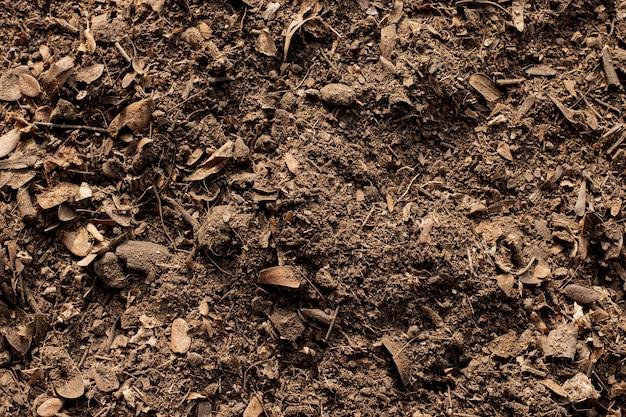 Gleba tekstura tło, żyzna gleba do sadzenia.