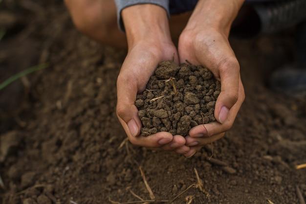 Gleba w złożonej dłoni rolnika