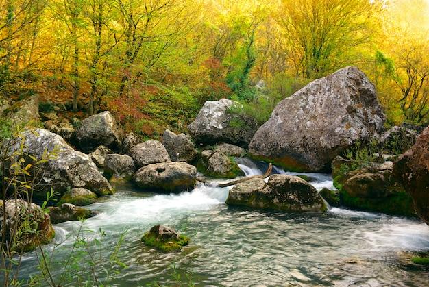 Głęboka jesień nad rzeką