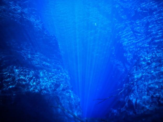 Głębokie błękitne wody laguny
