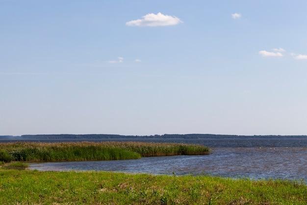 Głębokie jezioro porośnięte trawą i trzcinami wzdłuż brzegu, sezon letni