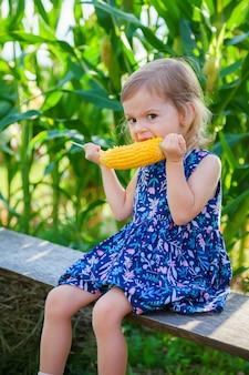 Głodna mała dziewczynka je kukurydzanego kolby