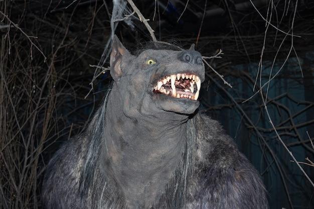 Głowa wilkołaka wśród ciemności i gałęzi, uśmiechnięty pysk, w muzeum bestiariuszy - sankt petersburg, rosja, czerwiec 2021.
