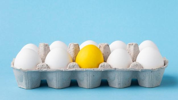 Gmo żywność modyfikowana chemicznie