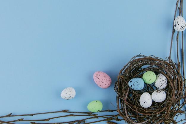 Gniazdo oddziałów i kolorowe jajka z bliska na niebieskim tle
