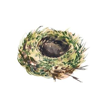 Gniazdo ptaka akwarela