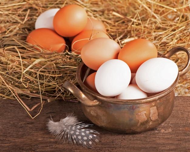 Gniazdo z jajami przepiórczymi na płótnie wielkanoc
