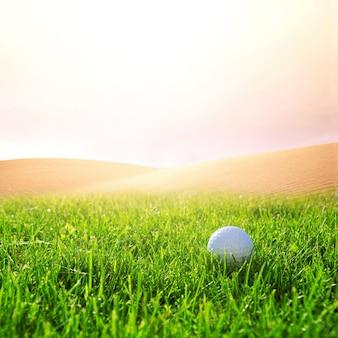 Golfball na polu golfowym.