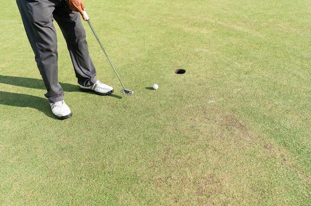 Golfista przygotowywa dla putt na zieleni podczas pola golfowego