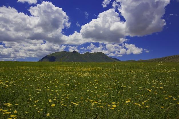 Góra ararat i jej widok