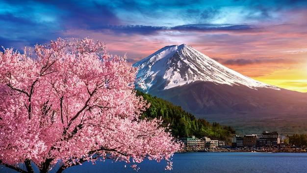 Góra fuji i kwitnące wiśnie wiosną, japonia.