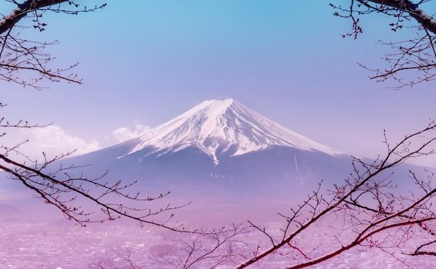 Góra fuji w zimie otoczona suchym drzewem jesiennym w różowym kolorze