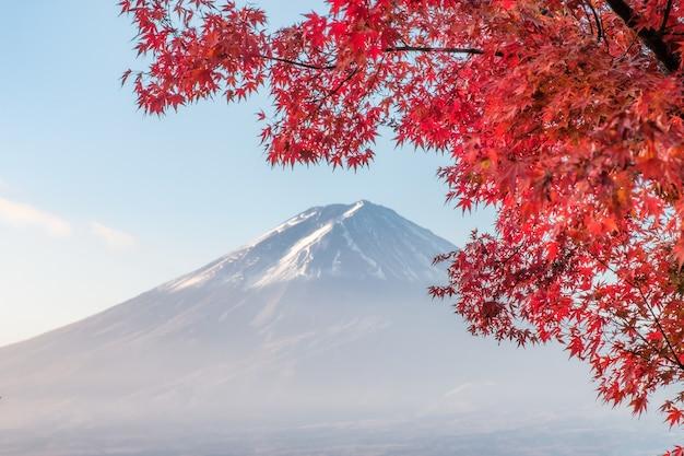 Góra fuji z czerwonym klonem liści rano nad jeziorem kawaguchiko, yamanashi, japonia
