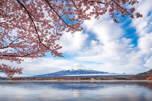 Góra fuji z radosnym kwiatem pełnym kwitnienia nad jeziorem kawaguchiko