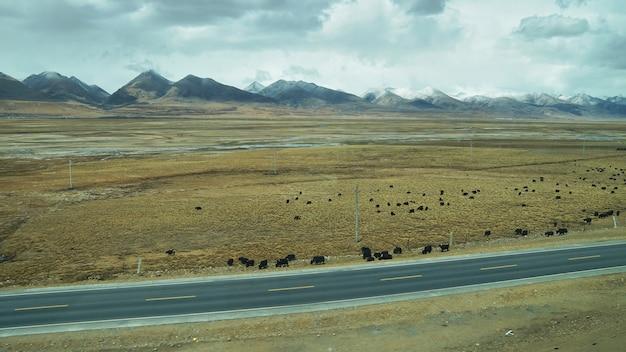 Góra i ziemia ze staromiejskim wyglądem i czystą scenerią