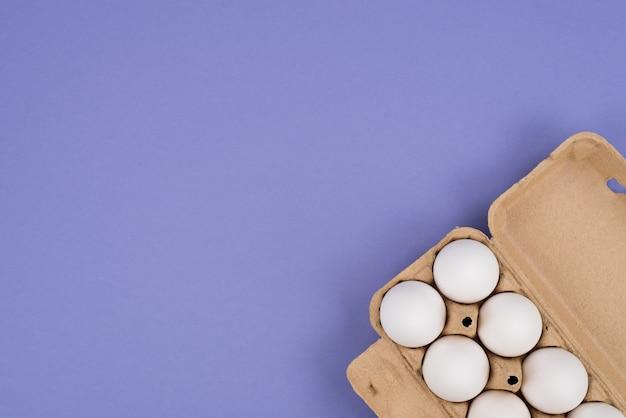 Góra powyżej bliska widok z góry zdjęcie obrazu pojemnika z białymi jajami na białym tle fioletowym tle