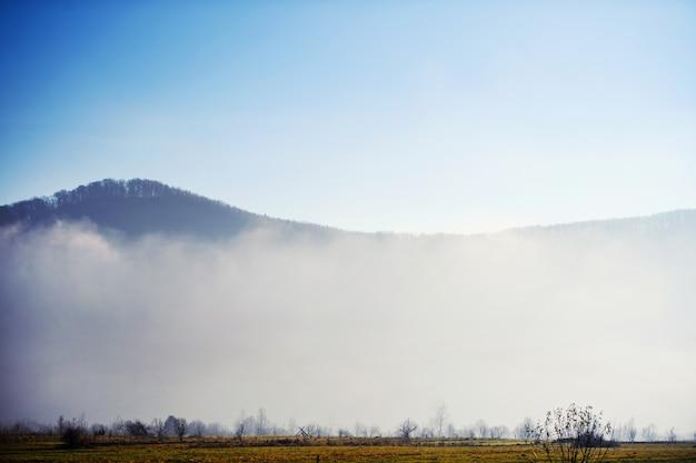 Góra w chmurze i mgle. lokalizacja karpaty, ukraina, europa. poznaj piękno ziemi. chmury rano zachód słońca
