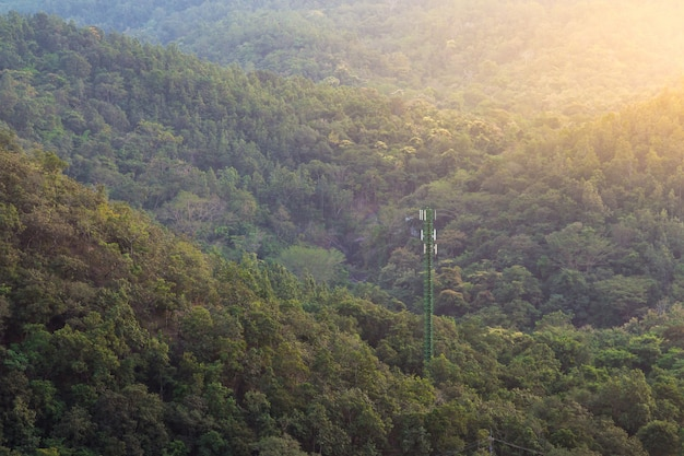 Góra wypełniona jest zielonymi drzewami o pomarańczowej czerwieni od słońca. antena na fores