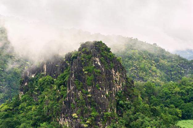 Góra z mgłą na szczycie góry po deszczu w przyrodzie