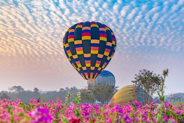 Gorące powietrze balony lata nad kwiatu polem z wschodem słońca w chiang rai prowinci, tajlandia