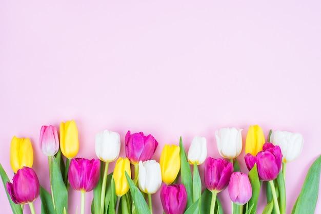 Górny wysoki kąt powyżej obrazu zdjęcia piękne stylowe jasne kwiaty w innym kolorze na białym tle pastelowe różowe tło
