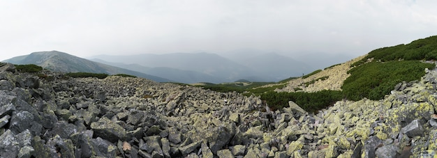Górska panorama kamienista i zachmurzenie (region gorgany karpat, ukraina). pięćdziesiąt zdjęć kompozytowych.