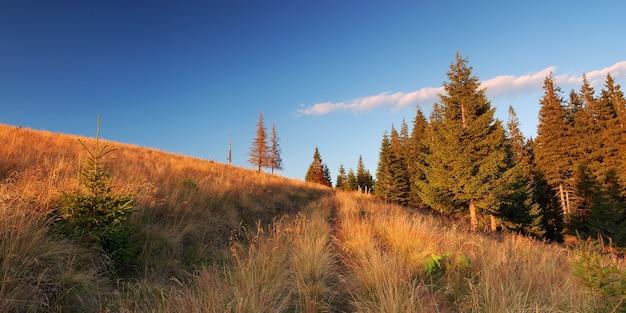 Górska panorama starej drogi w słoneczny wieczór
