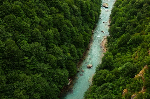 Górska piękna rzeka z czystą, błękitną wodą, pośrodku lasu i kamieni. naturalna nietknięta przyroda. widok z góry.