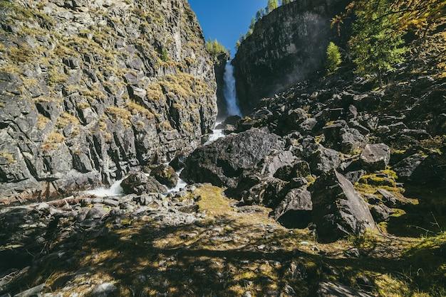 Górski jesienny krajobraz z pionowym dużym wodospadem i żółtymi modrzewiami. duży wodospad w wąskim wąwozie i złote modrzewie w jesiennych barwach. wysokie pionowe spadające wody i drzewa iglaste jesienią