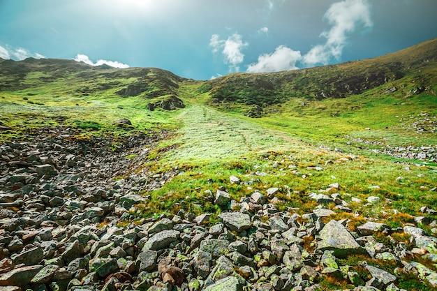 Górski krajobraz w lecie