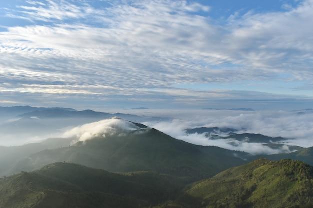 Górski krajobraz z mgłą, chmurą i lasem.