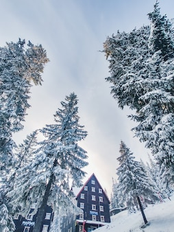 Górski ośrodek narciarski w karpatach kopia przestrzeń