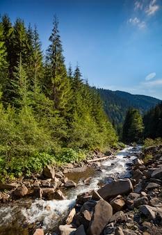Górski potok rzeczny. letni krajobraz przyrody