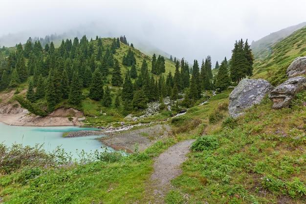Górski potok wpada do dużego jeziora ałmaty. duży zbiornik świeżej wody pitnej