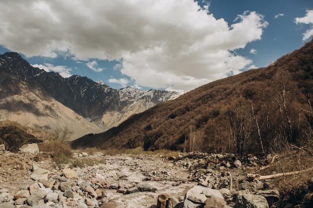Górski strumień schodzi z góry wzdłuż wąwozu