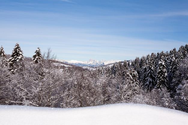 Górski zimowy krajobraz ze śniegiem
