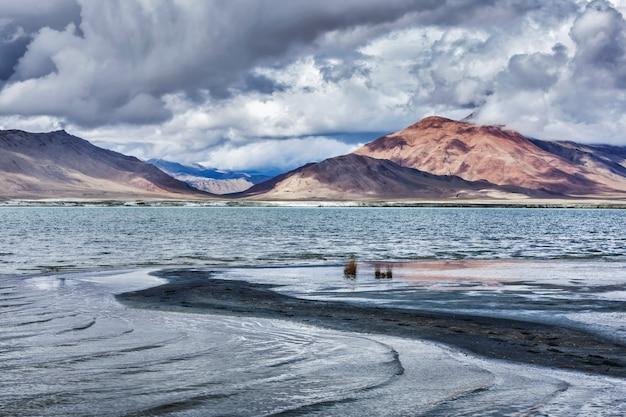 Górskie jezioro tso kar w himalajach