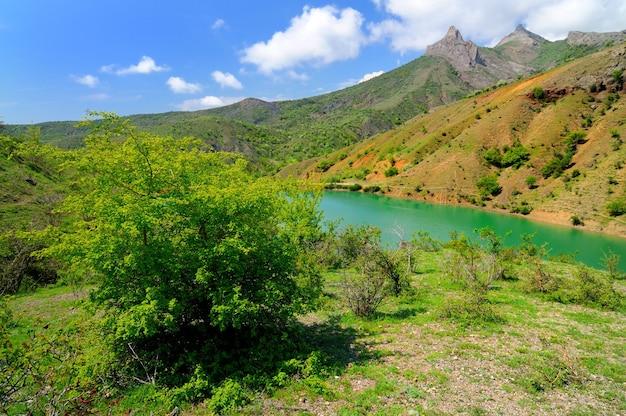 Górskie jezioro z jasnozieloną wodą, duży kamień na pierwszym planie na brzegu. zielone drzewa i rośliny w tle