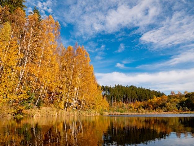 Górskie jezioro z sosnami i brzozami w sezonie jesiennym