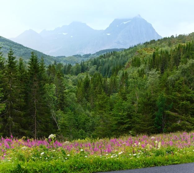 Górskie lato pochmurny widok z kwiatami z przodu
