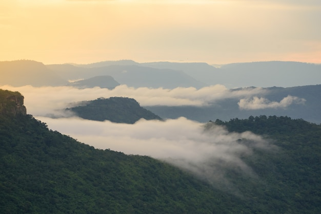 Góry fog cover
