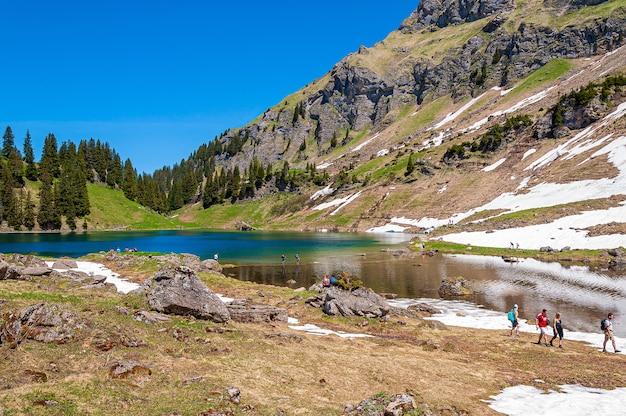 Góry i drzewa otoczone jeziorem lac lioson w szwajcarii