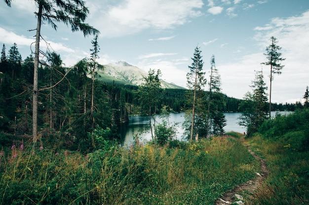 Góry i jezioro, vintage filtr