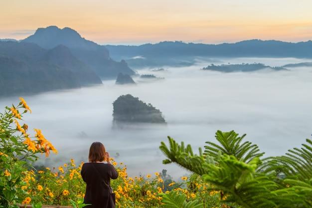 Góry i kwiatu widoki phu langka park narodowy, tajlandia