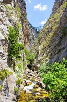 Góry i las - piękny krajobraz kanionu sapadere w turcji
