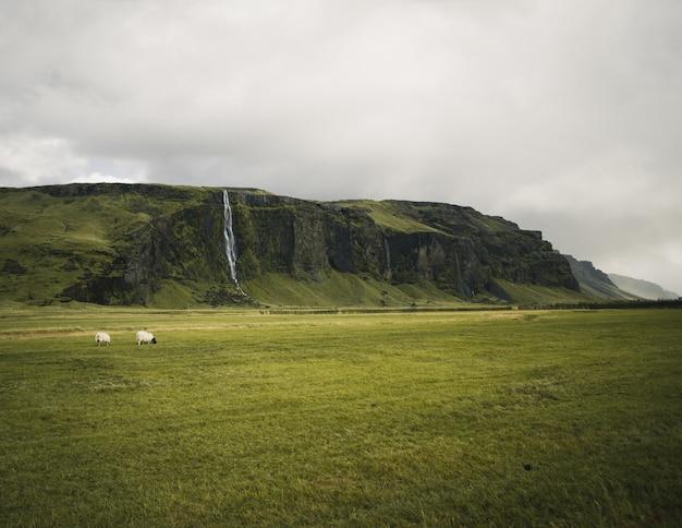 Góry islandii