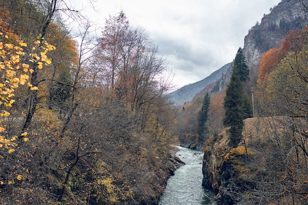 Góry jesień las rzeka krajobraz natura podróż