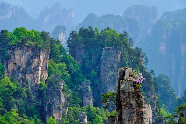 Góry zhangjiajie, chiny